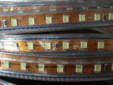 Ce 2 anni della garanzia 220V/127V LED di indicatore luminoso flessibile della corda (SMD2835-108LED)