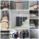 Dessiccateur de viande, déshydrateur de nourriture, machines sèches de fruit