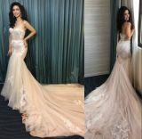 실제적인 숙녀 레이스 인어는 의복 신부 결혼 예복 웨딩 드레스를 입는다