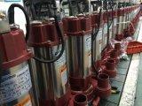 Pompe à eau submersible de SPA6-28/2-1.1A avec le commutateur de flotteur