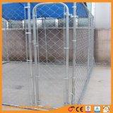 Canile galvanizzato del cane di collegamento Chain con il tetto