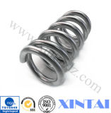 Various Types를 위한 주문 Steel Big Compression Springs