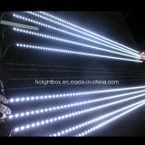 Caixa leve magnética acrílica do diodo emissor de luz da luz do retrato da parede do diodo emissor de luz da suspensão de parede