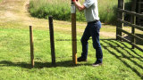 Thrall clôture en acier T post pilote avec plage 20-80mm de diamètre