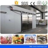Salle de stockage à froid d'alimentation de l'usine de panneaux de polyuréthane pour le fromage Storage