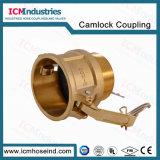 Accoppiamento d'ottone forgiato del Camlock