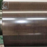 Краска Dx51d Z60g Akzonobel Prepainted гальванизированная стальная катушка для листа толя