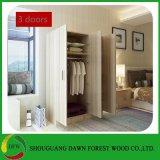 Garde-robe à la maison de vente chaude de chambre à coucher de meubles