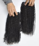 Extensões brasileiras Kinky humanas por atacado do cabelo do Virgin da onda 100% da classe 9A