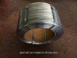 Filo di acciaio galvanizzato 0.5mm-5.0mm 1kg-500kg/Coil