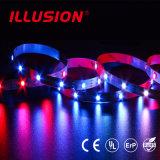 Striscia flessibile di approvazione Ws2812 CI Digital 5V LED dell'UL