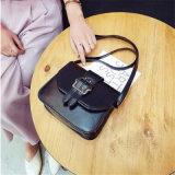 Disegni di vendita caldi dell'unità di elaborazione delle borse, sacchetto di spalla