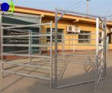 6 trilhos Quente-Mergulharam o painel galvanizado da cerca do gado do metal