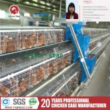 West Africa Type Wire Netting Layer Cages