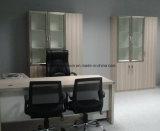 Kabinet van het Dossier van het Kantoormeubilair van de Opslag van de Besparing van de Archiefkast van het bureau het Ruimte