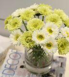 Fiore artificiale chiaro delle dalie del fiore di caduta artificiale di seta delle dalie per la decorazione del partito della casa di cerimonia nuziale