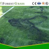 스포츠 인공적인 합성 잔디 (SP)를 위한 직업적인 공급자