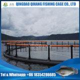 Gabbia di galleggiamento di piscicoltura, gabbia del mare per l'epinefolo