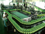 Linea di produzione di chiave in mano della bevanda del tè della soluzione 2000-30000bph