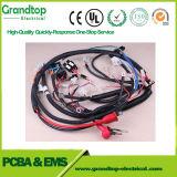 De auto Kabel van de Assemblage van de Apparatuur van de Uitrusting van de Draad Elektronische
