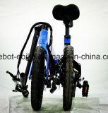 4개 속도를 가진 16 인치 개인적인 운송업자 Foldable E 자전거