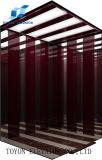 Toyon ISO9001 Fábrica de elevador de passageiro