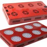 Échantillon gratuit grandir la lumière de la lampe à LEDfournisseur chinois
