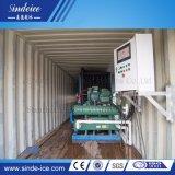 Ce/ISO9001 ha approvato il ghiaccio in pani di 40FT Containeried che fa la pianta della macchina del creatore con il buon prezzo ed il compressore della Germania Bitzer