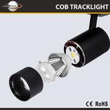 Le corps en aluminium Ce&RoHS de la Chine reconnaissent la fabrication de DEL Tracklight