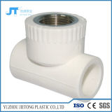 配管材料熱い販売PPRの管および付属品