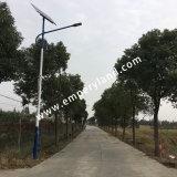 6m 40W Solar-LED Straßenlaternemit Kontrollsystem (DZS-06-40W)