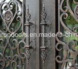 トランサムが付いている贅沢な錬鉄のドア