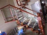 Escalier en bois modéré d'acier inoxydable de coût avec le niveau élevé Struction fabriqué en Chine