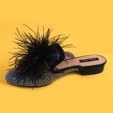숙녀 흑염주 모피를 가진 낮은 발뒤꿈치 슬라이더 슬리퍼