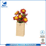Custom étanche fleur feuilleté sac de papier glacé