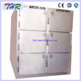 Thr-Fr006 морга холодильник для шести