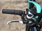 Bicicleta nova da gordura de 4.8 polegadas 2018