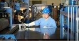 ASTM A240 301 bande de l'acier inoxydable 304 316