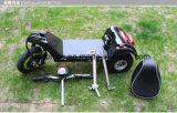 500W Drit eléctrico moto con 3 ruedas