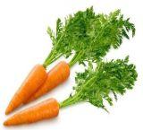 Carotenoidi dell'estratto della carota beta, carotene della polvere del commestibile: 10%, 20%, 30%, 98% da HPLC