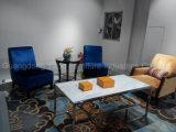 Mobília económica do hotel com o sofá ajustado para a sala de estar da entrada (HL-X-5)