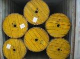 Cavo ambientale di alluminio Quadruplex del conduttore 600V Urd