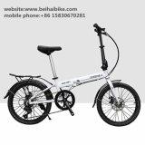 Bici caliente de señora Bike Women Bike City de la venta