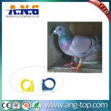 Etiqueta de pombo RFID programáveis reutilizáveis