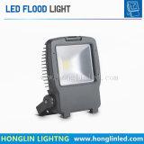 IP65はカラー30W LED庭の洪水ライトを選抜する