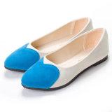 Cinco zapatos del talón plano de las mujeres de los colores solos para todos sazonan los zapatos ocasionales