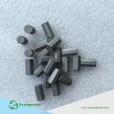 La minería de tungsteno de carburo cementado bits para los dientes de corte