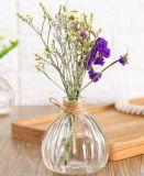 Round estilo simples garrafa de vidro vaso de flores e artesanato
