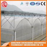 Het boog-Type van Afzet van de fabriek Plastic Serre met het Systeem van de Irrigatie
