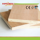 Peuplier et contre-plaqué de faisceau d'eucalyptus de Linyi